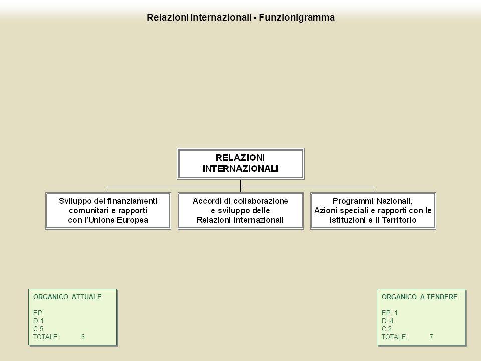 13 Relazioni Internazionali - Funzionigramma ORGANICO A TENDERE EP: 1 D: 4 C:2 TOTALE:7 ORGANICO A TENDERE EP: 1 D: 4 C:2 TOTALE:7 ORGANICO ATTUALE EP