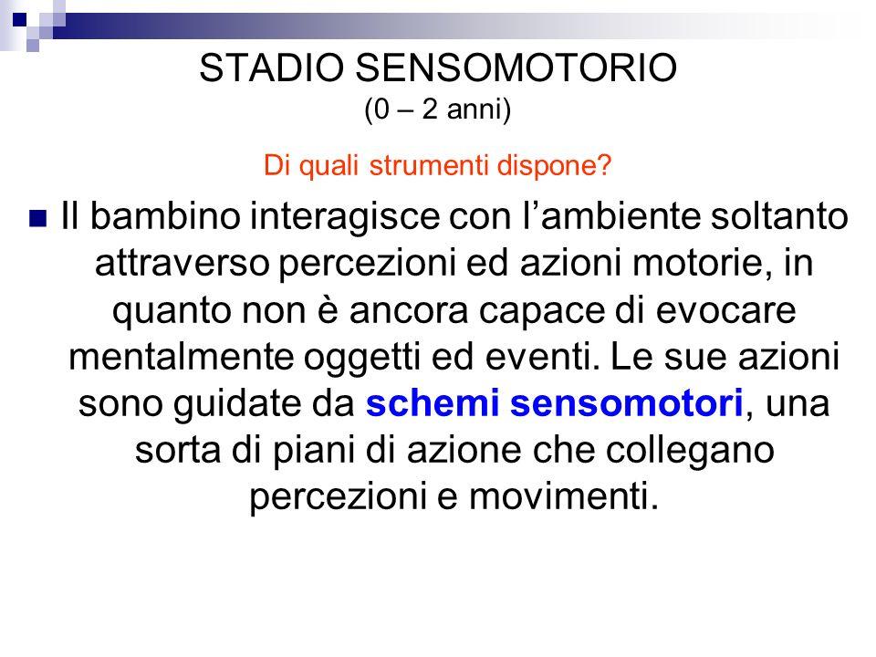 STADIO SENSOMOTORIO (0 – 2 anni) Di quali strumenti dispone? Il bambino interagisce con lambiente soltanto attraverso percezioni ed azioni motorie, in