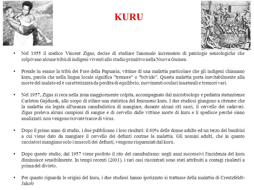 KURU Nel 1955 il medico Vincent Zigas, decise di studiare l'anomalo incremento di patologie neurologiche che colpivano alcune tribù di indigeni vivent