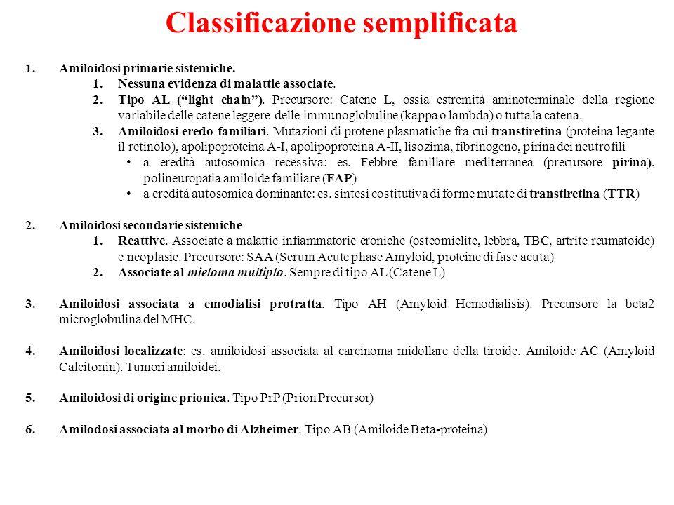 1.Amiloidosi primarie sistemiche. 1.Nessuna evidenza di malattie associate. 2.Tipo AL (light chain). Precursore: Catene L, ossia estremità aminotermin