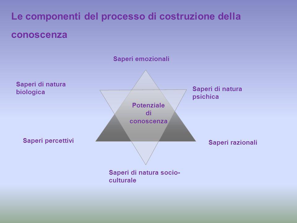 Le componenti del processo di costruzione della conoscenza Saperi emozionali Saperi razionali Saperi percettivi Saperi di natura biologica Saperi di n