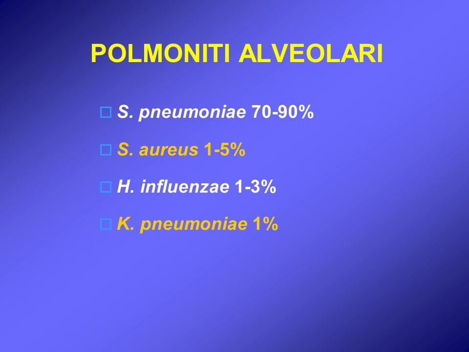 POLMONITI ALVEOLARI S. pneumoniae 70-90% S. aureus 1-5% H. influenzae 1-3% K. pneumoniae 1%