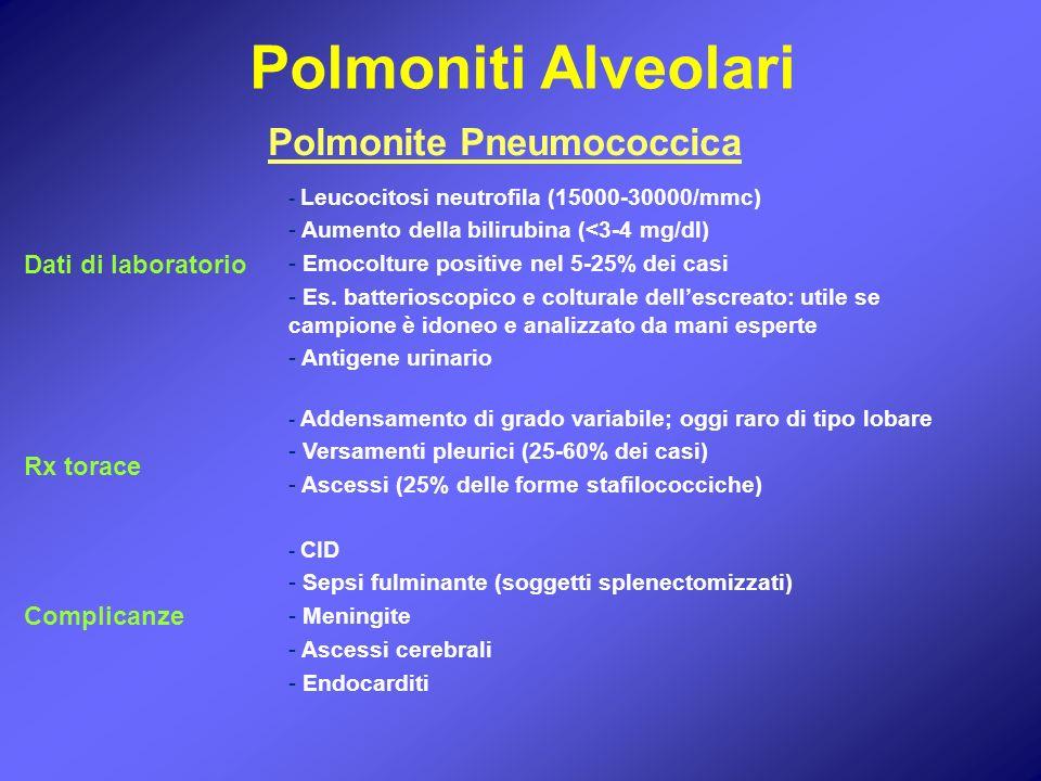 - Leucocitosi neutrofila (15000-30000/mmc) - Aumento della bilirubina (<3-4 mg/dl) - Emocolture positive nel 5-25% dei casi - Es. batterioscopico e co