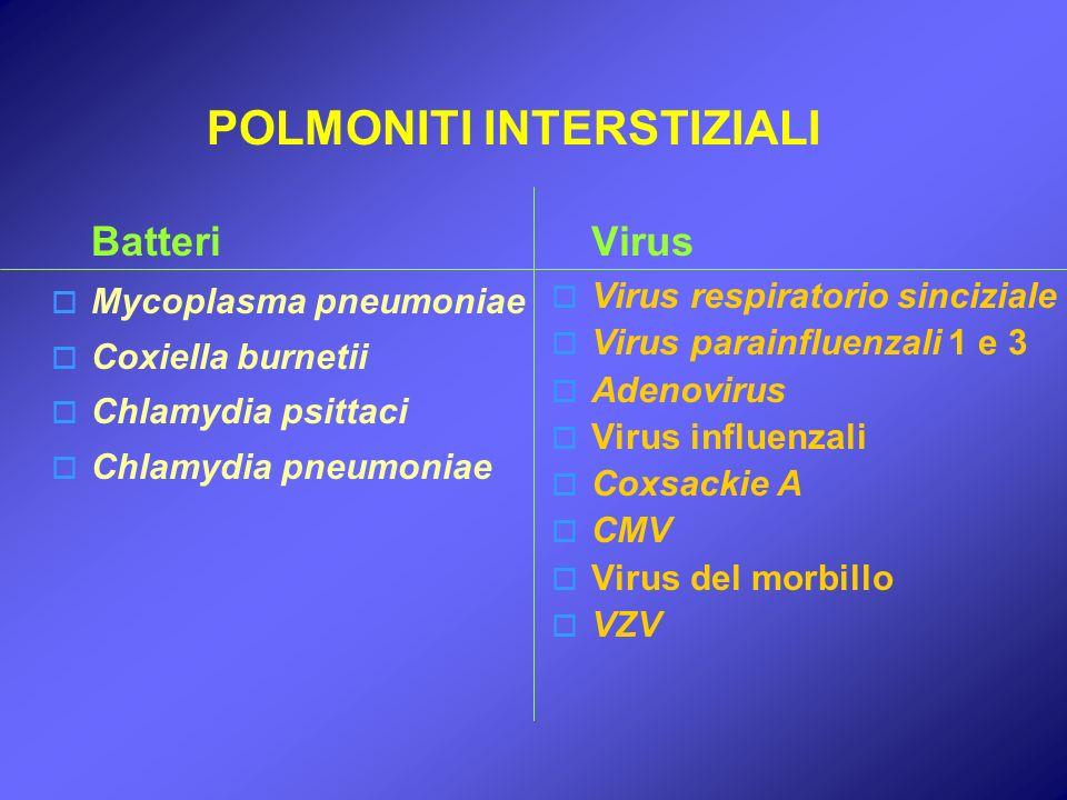 POLMONITI INTERSTIZIALI Virus Virus respiratorio sinciziale Virus parainfluenzali 1 e 3 Adenovirus Virus influenzali Coxsackie A CMV Virus del morbill