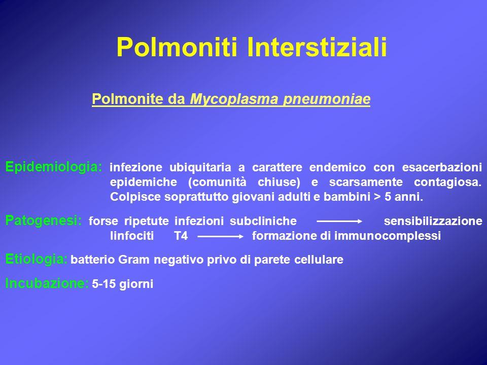 Polmoniti Interstiziali Polmonite da Mycoplasma pneumoniae Epidemiologia: infezione ubiquitaria a carattere endemico con esacerbazioni epidemiche (com