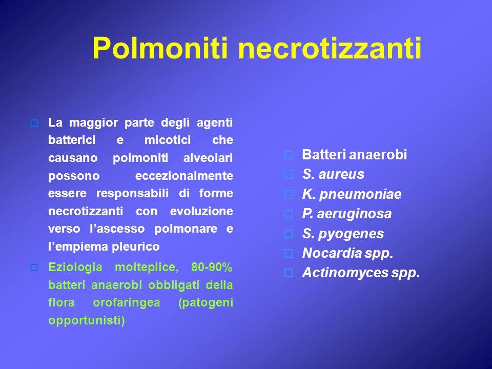 La maggior parte degli agenti batterici e micotici che causano polmoniti alveolari possono eccezionalmente essere responsabili di forme necrotizzanti