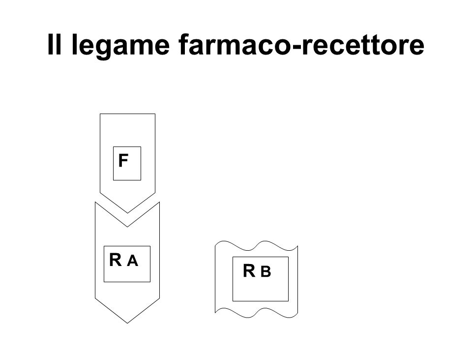 Il legame farmaco-recettore F R AR A R B