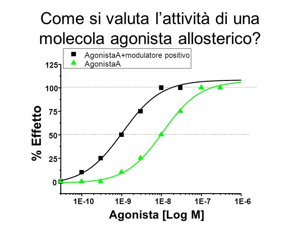 Come si valuta lattività di una molecola agonista allosterico? B 1E-101E-91E-81E-71E-6 0 25 50 75 100 125 AgonistaA +modulatore positivo AgonistaA % E
