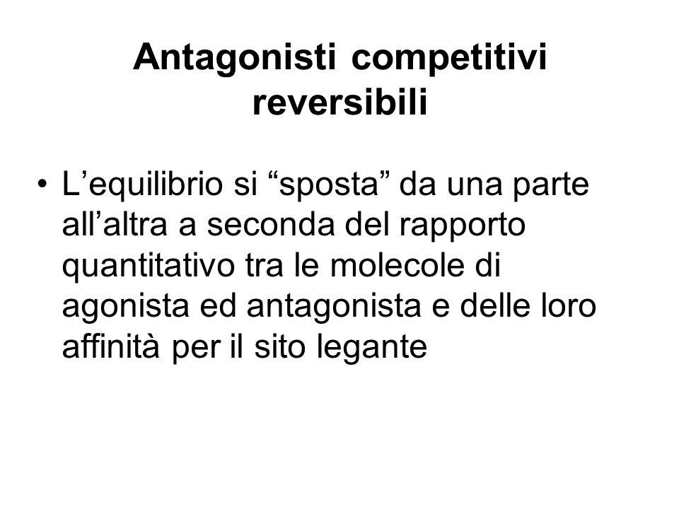 Antagonisti competitivi reversibili Lequilibrio si sposta da una parte allaltra a seconda del rapporto quantitativo tra le molecole di agonista ed ant