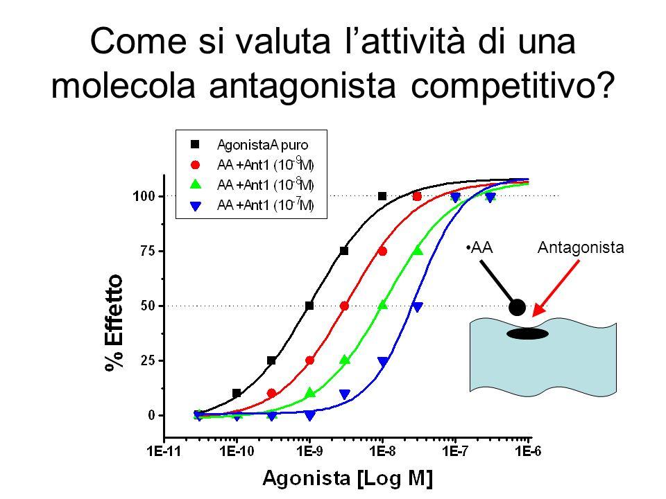 Come si valuta lattività di una molecola antagonista competitivo? AA Antagonista