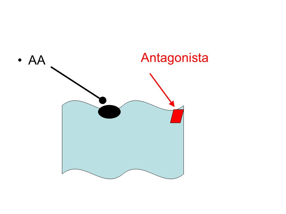 AA Antagonista