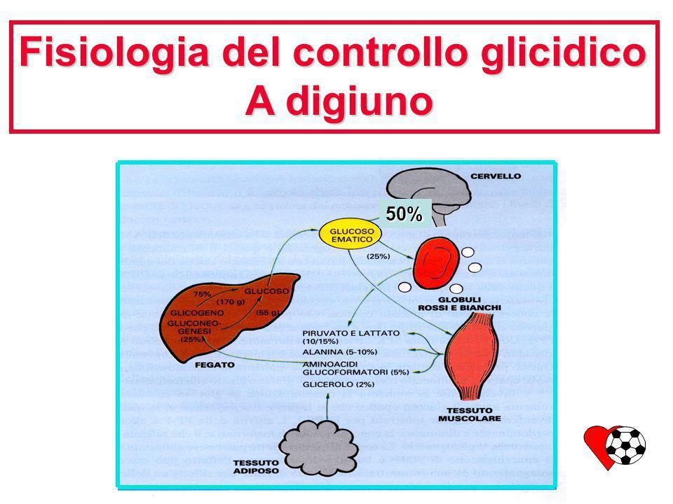 Fisiologia del controllo glicidico A digiuno A digiuno 50%