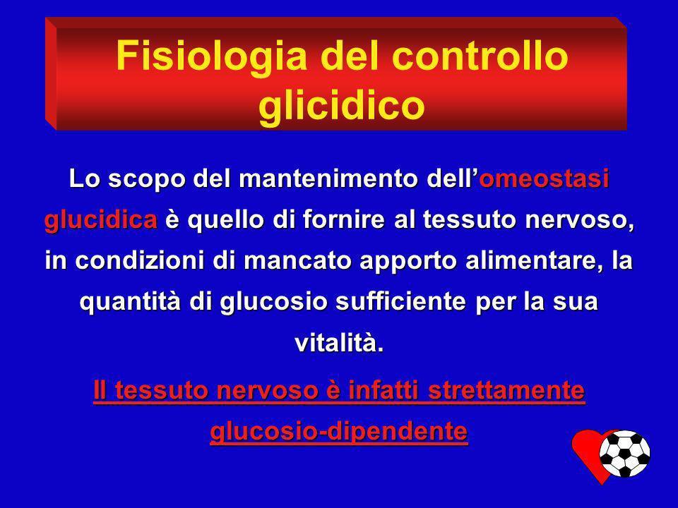 Fisiologia del controllo glicidico Lo scopo del mantenimento dellomeostasi glucidica è quello di fornire al tessuto nervoso, in condizioni di mancato