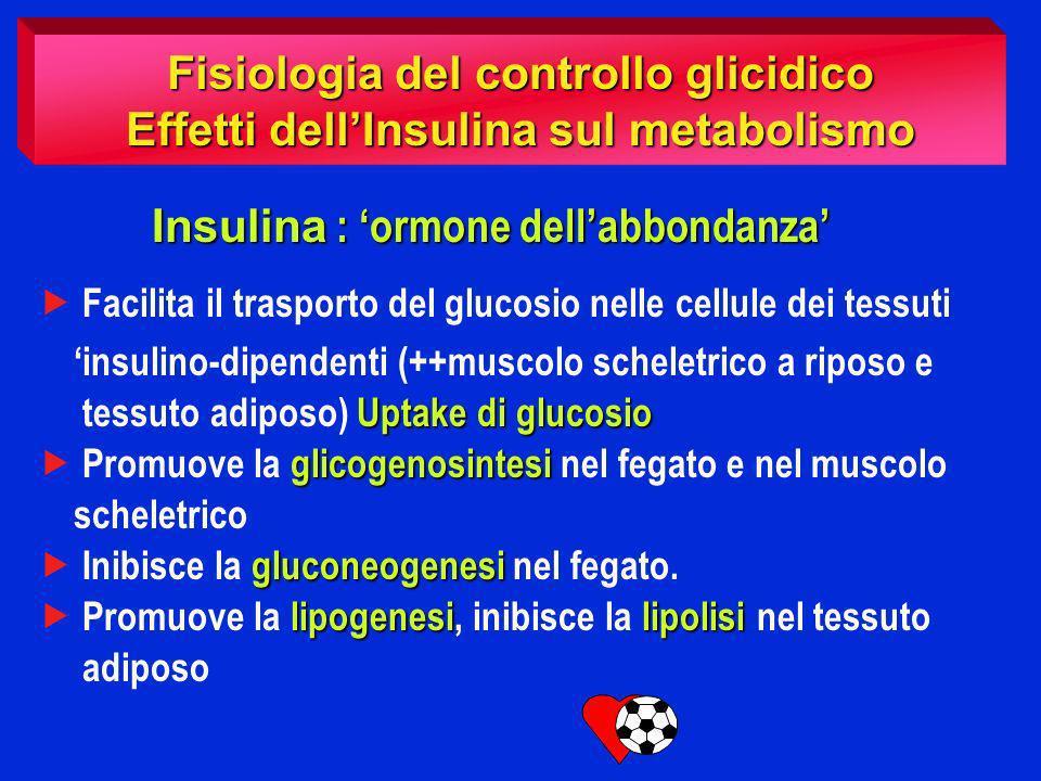 Fisiologia del controllo glicidico InsulinaGlucagone Condizioni normali Condizioni stressanti ( digiuno prolungato, esercizio fisico intenso….) Cortisolo Adrenalina GH +