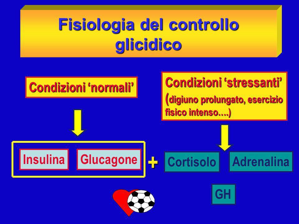 Fisiologia del controllo glicidico (Condizioni basali) Dopo una notte di digiuno il 50% del glucosio circolante è utilizzato Dopo una notte di digiuno il 50% del glucosio circolante è utilizzato dal cervello, il resto dalle cellule ematiche,dal rene e dal muscolo Lorigine di tale glucosio è epatica, attraverso la glicogenolisi (75%) e Lorigine di tale glucosio è epatica, attraverso la glicogenolisi (75%) e la gluconeogenesi (25%).