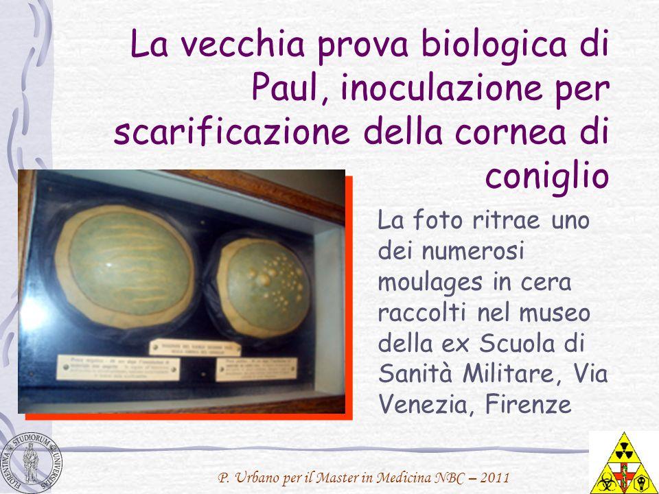 P. Urbano per il Master in Medicina NBC – 2011 La vecchia prova biologica di Paul, inoculazione per scarificazione della cornea di coniglio La foto ri