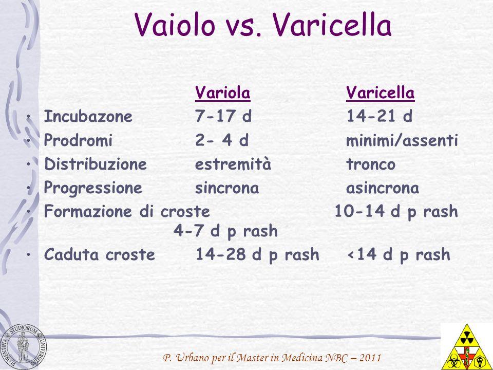 P. Urbano per il Master in Medicina NBC – 2011 Vaiolo vs. Varicella VariolaVaricella Incubazone 7-17 d14-21 d Prodromi2- 4 dminimi/assenti Distribuzio