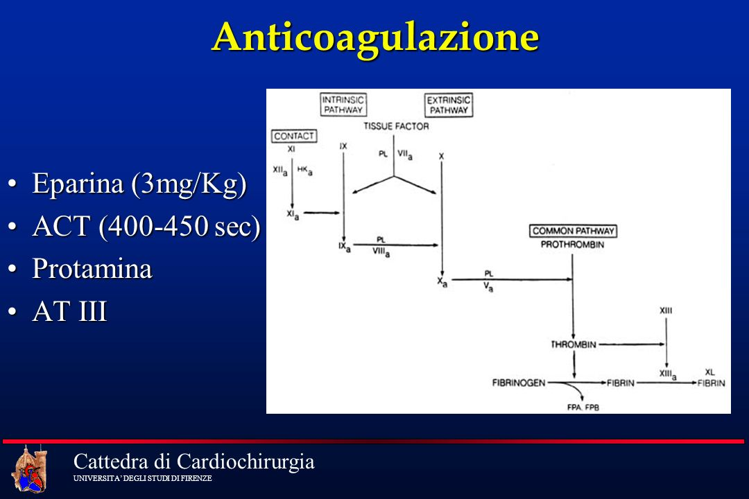 Cattedra di Cardiochirurgia UNIVERSITA DEGLI STUDI DI FIRENZE Anticoagulazione Eparina (3mg/Kg)Eparina (3mg/Kg) ACT (400-450 sec)ACT (400-450 sec) Pro