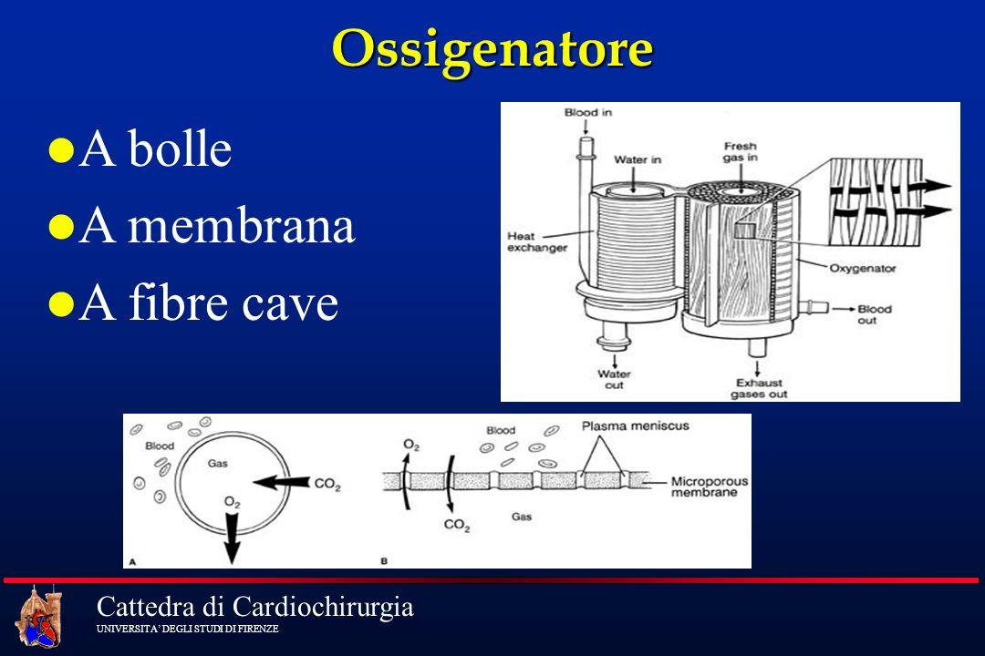 Cattedra di Cardiochirurgia UNIVERSITA DEGLI STUDI DI FIRENZE Ossigenatore A bolle A membrana A fibre cave