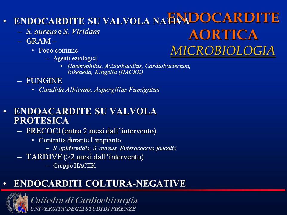 Cattedra di Cardiochirurgia UNIVERSITA DEGLI STUDI DI FIRENZE ENDOCARDITE AORTICA MICROBIOLOGIA ENDOCARDITE SU VALVOLA NATIVAENDOCARDITE SU VALVOLA NA