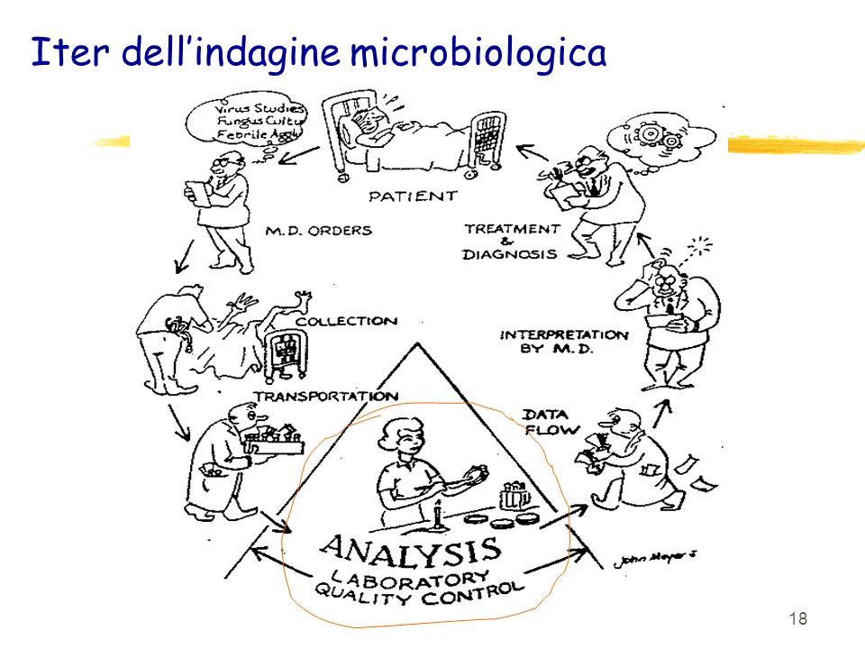 18 Iter dellindagine microbiologica