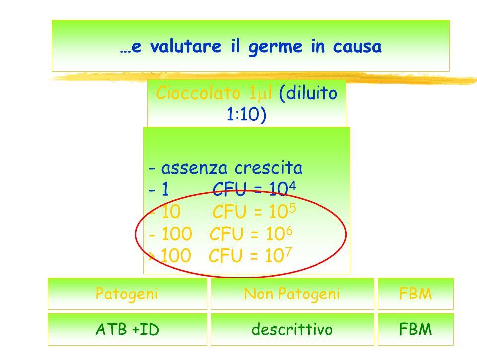 47 …e valutare il germe in causa - assenza crescita - 1 CFU = 10 4 - 10 CFU = 10 5 - 100 CFU = 10 6 > 100 CFU = 10 7 Patogeni Cioccolato 1 l (diluito