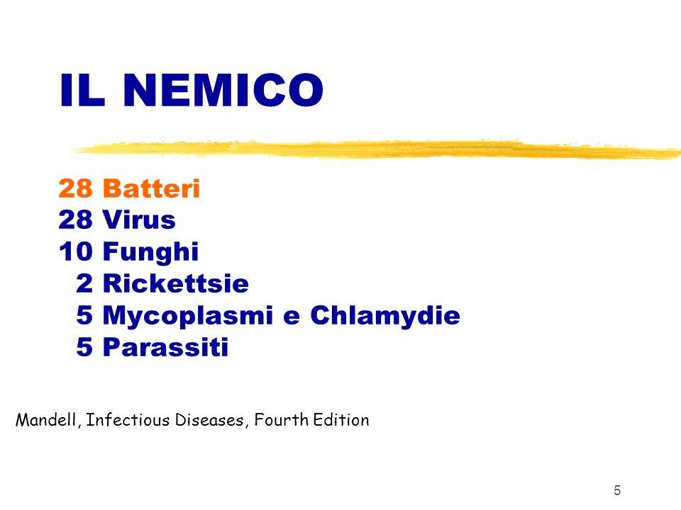 6 I microbi del cavo orale - Flora endogena del cavo orale: 10 15 1.00000.00 0 0000