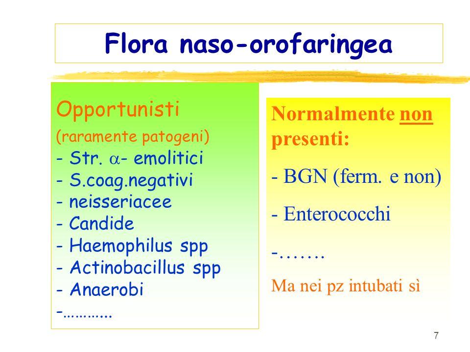 7 Flora naso-orofaringea Opportunisti (raramente patogeni) - Str. - emolitici - S.coag.negativi - neisseriacee - Candide - Haemophilus spp - Actinobac