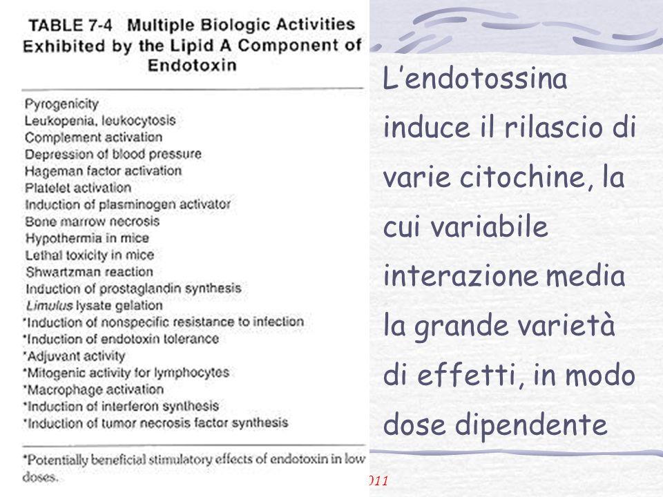 P. Urbano 2011 Lendotossina induce il rilascio di varie citochine, la cui variabile interazione media la grande varietà di effetti, in modo dose dipen