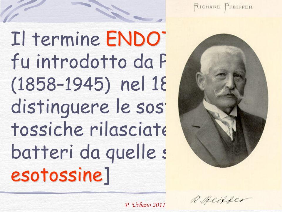 P. Urbano 2011 ENDOTOSSINA le esotossine Il termine ENDOTOSSINA fu introdotto da Pfeiffer (1858–1945) nel 1893 per distinguere le sostanze tossiche ri