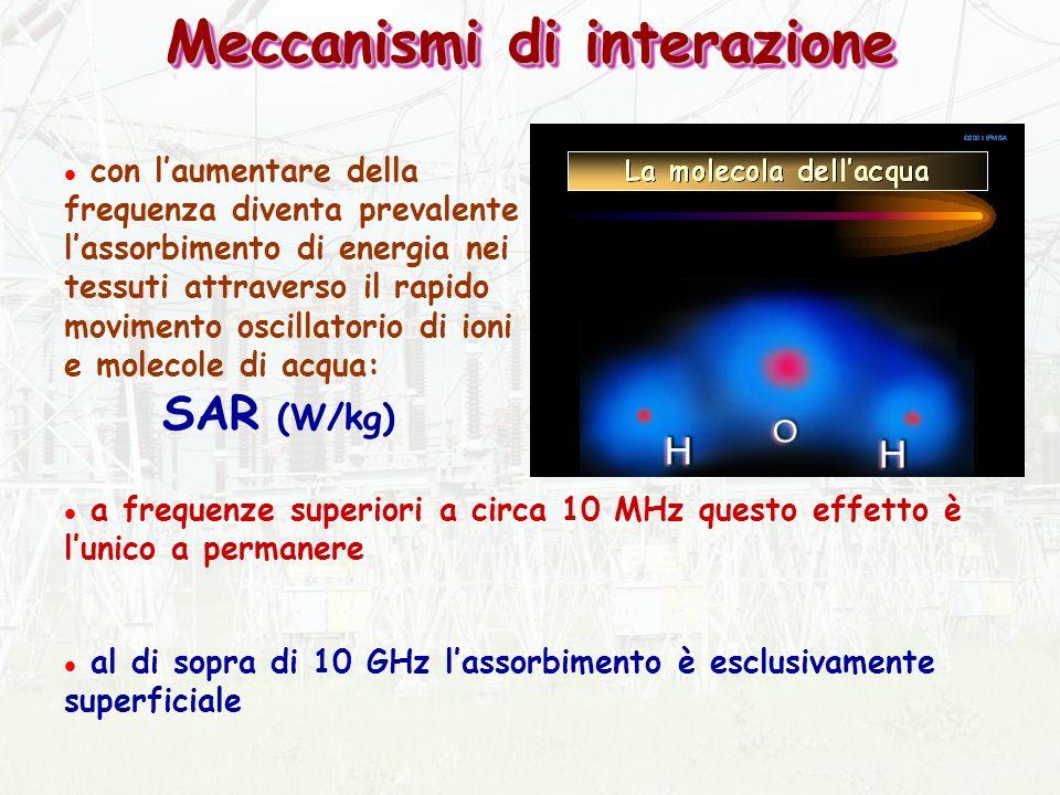 l con laumentare della frequenza diventa prevalente lassorbimento di energia nei tessuti attraverso il rapido movimento oscillatorio di ioni e molecole di acqua: SAR (W/kg) l a frequenze superiori a circa 10 MHz questo effetto è lunico a permanere l al di sopra di 10 GHz lassorbimento è esclusivamente superficiale Meccanismi di interazione