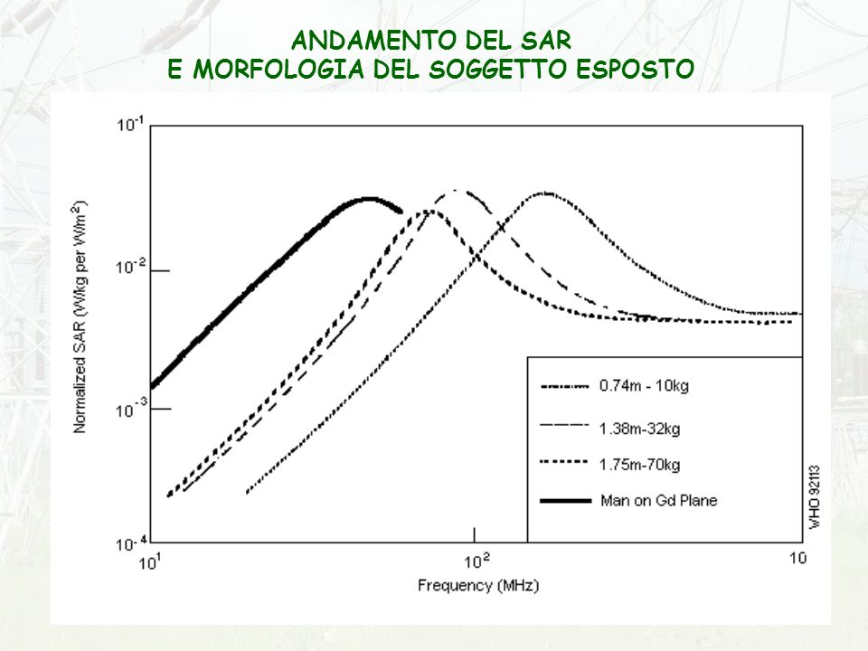 ANDAMENTO DEL SAR E MORFOLOGIA DEL SOGGETTO ESPOSTO