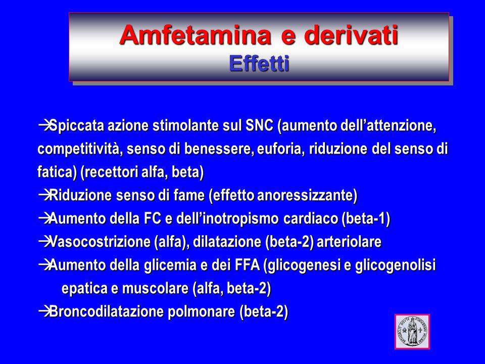 Amfetamina e derivati Effetti à Spiccata azione stimolante sul SNC (aumento dellattenzione, competitività, senso di benessere, euforia, riduzione del senso di fatica) (recettori alfa, beta) à Riduzione senso di fame (effetto anoressizzante) à Aumento della FC e dellinotropismo cardiaco (beta-1) à Vasocostrizione (alfa), dilatazione (beta-2) arteriolare à Aumento della glicemia e dei FFA (glicogenesi e glicogenolisi epatica e muscolare (alfa, beta-2) à Broncodilatazione polmonare (beta-2)