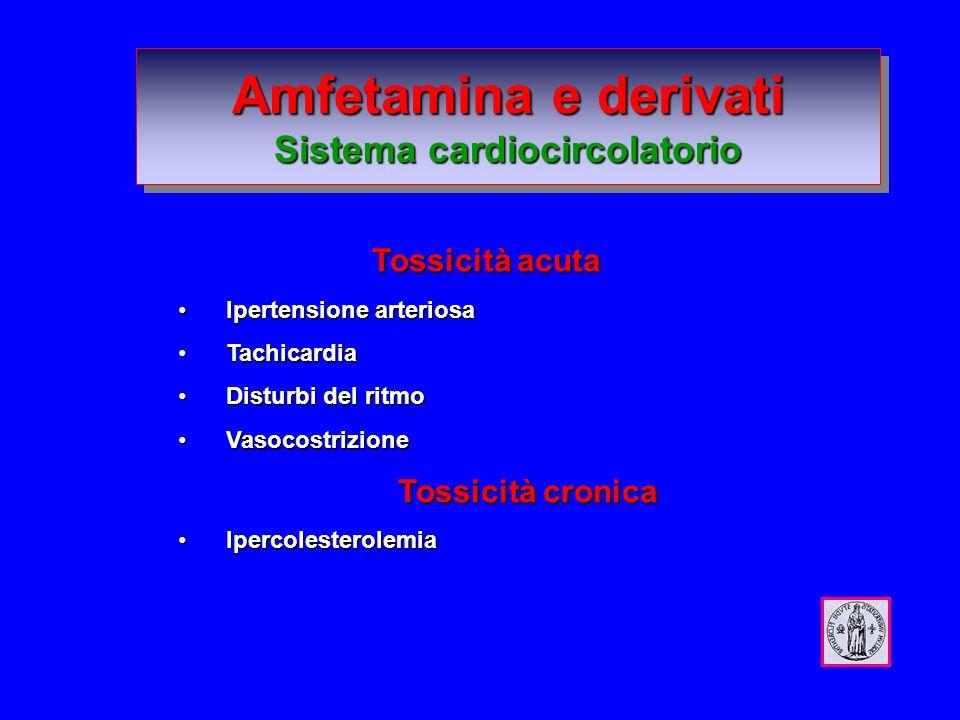 Amfetamina e derivati Sistema cardiocircolatorio Tossicità acuta Tossicità acuta Ipertensione arteriosa Ipertensione arteriosa Tachicardia Tachicardia Disturbi del ritmo Disturbi del ritmo Vasocostrizione Vasocostrizione Tossicità cronica Ipercolesterolemia Ipercolesterolemia