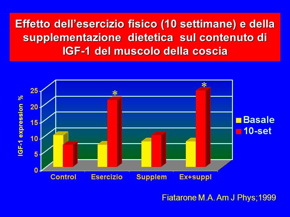 Effetto dellesercizio fisico (10 settimane) e della supplementazione dietetica sul contenuto di IGF-1 del muscolo della coscia Fiatarone M.A.