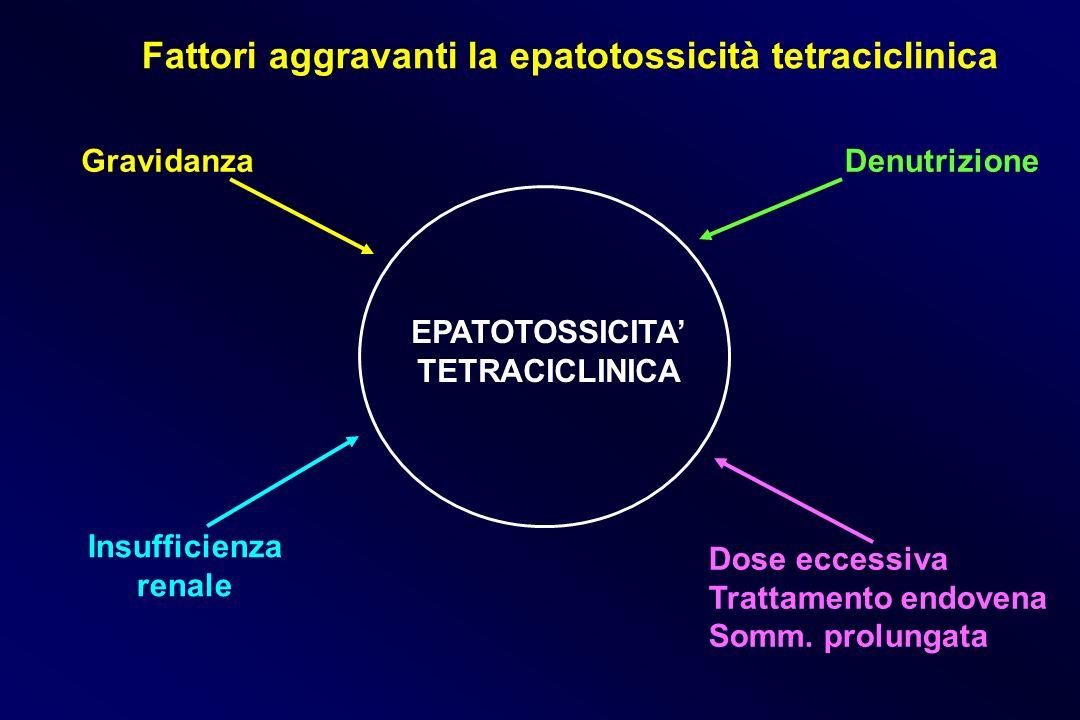 EPATOTOSSICITA TETRACICLINICA Gravidanza Insufficienza renale Denutrizione Dose eccessiva Trattamento endovena Somm. prolungata Fattori aggravanti la