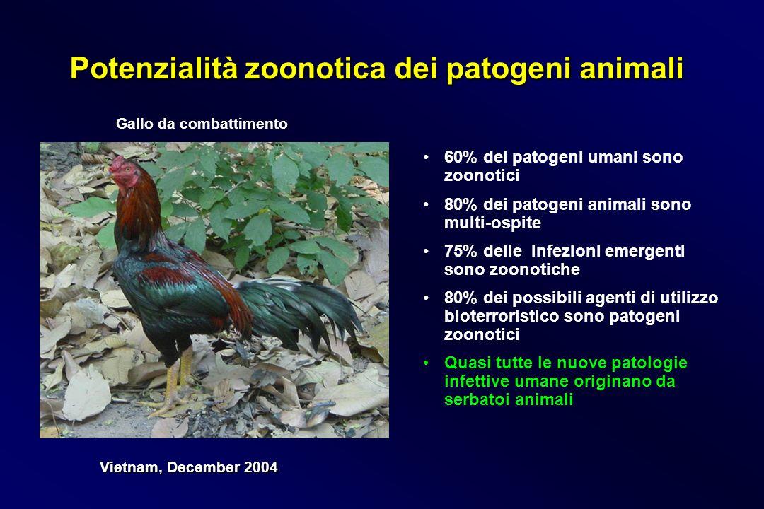 Potenzialità zoonotica dei patogeni animali 60% dei patogeni umani sono zoonotici 80% dei patogeni animali sono multi-ospite 75% delle infezioni emerg