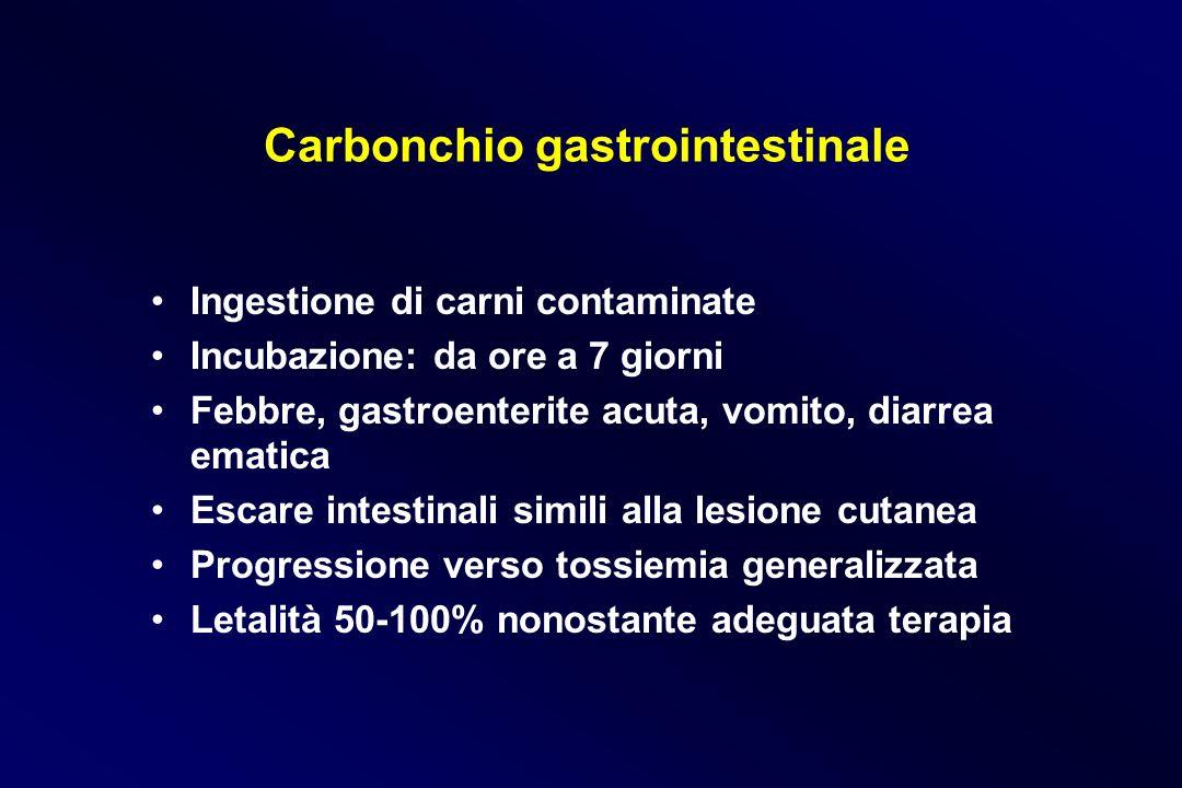 Carbonchio gastrointestinale Ingestione di carni contaminate Incubazione: da ore a 7 giorni Febbre, gastroenterite acuta, vomito, diarrea ematica Esca