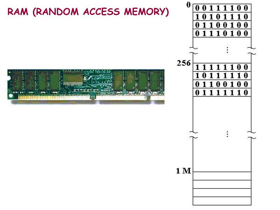 BIOS ~ 2 cm Contiene tutte le istruzioni necessarie ad accedere ai vari dispositivi di I/O.