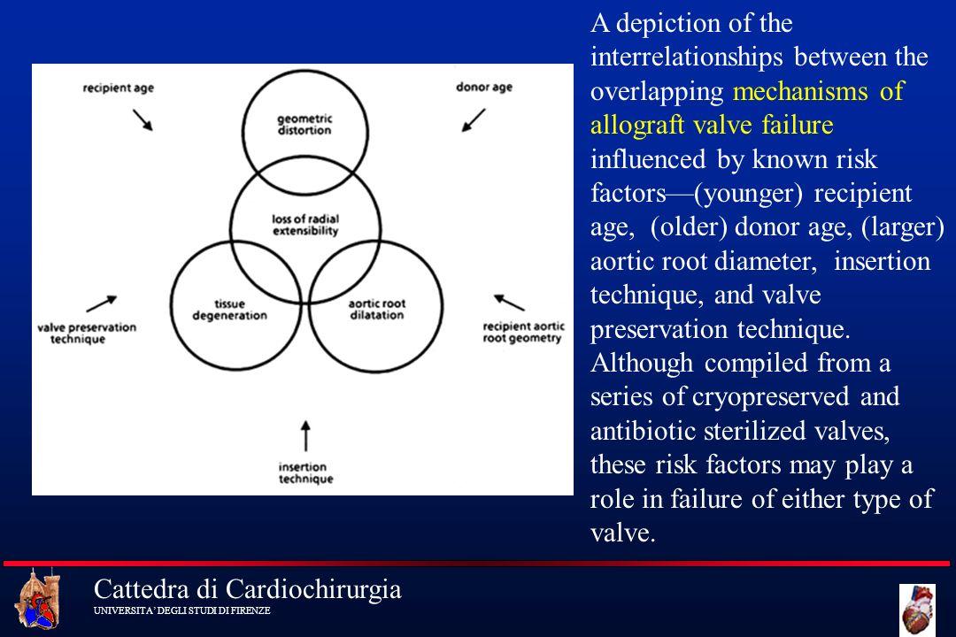Cattedra di Cardiochirurgia UNIVERSITA DEGLI STUDI DI FIRENZE A depiction of the interrelationships between the overlapping mechanisms of allograft va