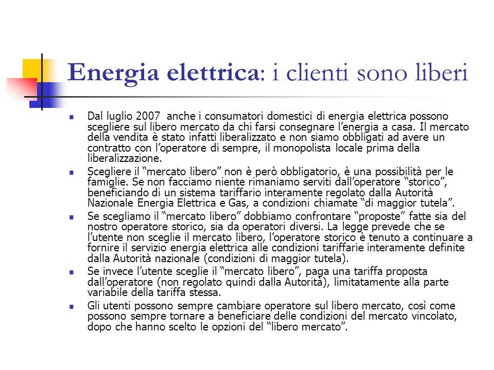 Energia elettrica: i clienti sono liberi Dal luglio 2007 anche i consumatori domestici di energia elettrica possono scegliere sul libero mercato da ch