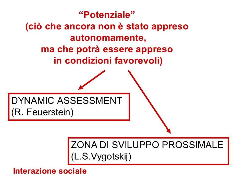 DYNAMIC ASSESSMENT (R.