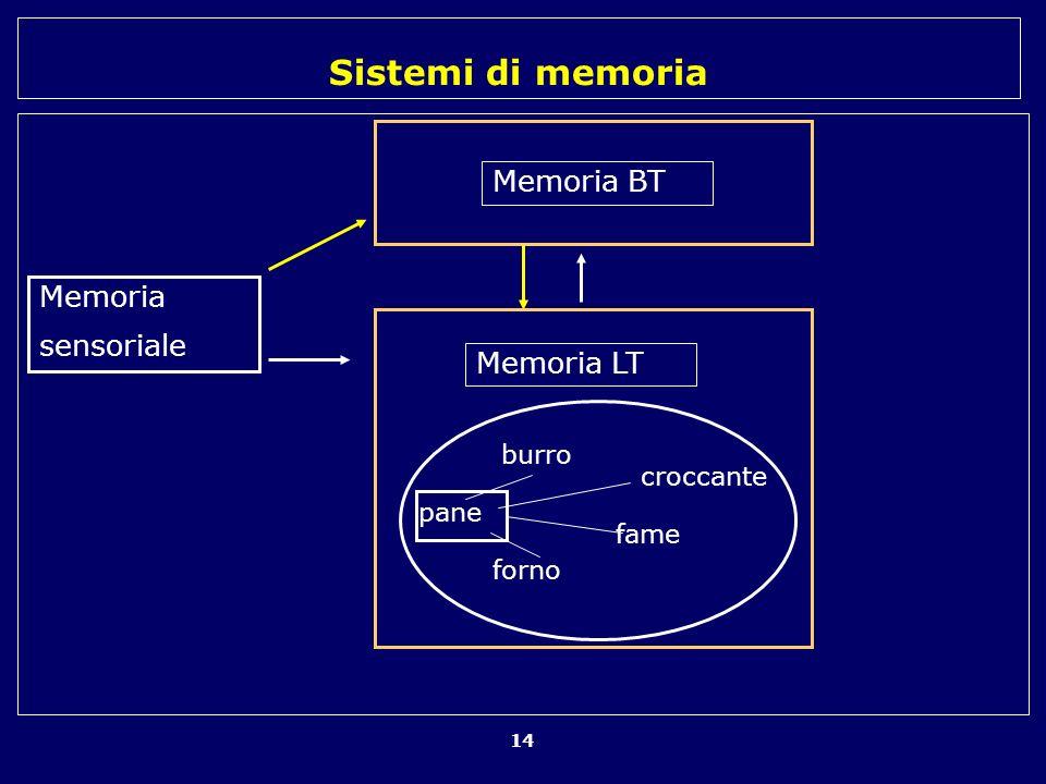 Sistemi di memoria 14 pane burro forno fame croccante Memoria sensoriale Memoria BT Memoria LT