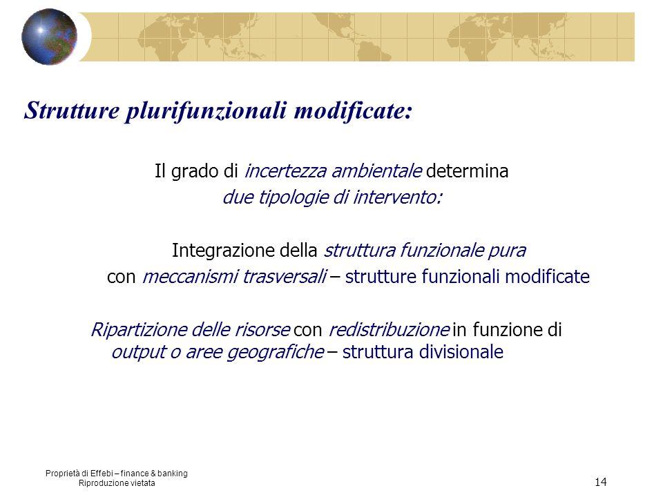 Proprietà di Effebi – finance & banking Riproduzione vietata 14 Strutture plurifunzionali modificate: Il grado di incertezza ambientale determina due