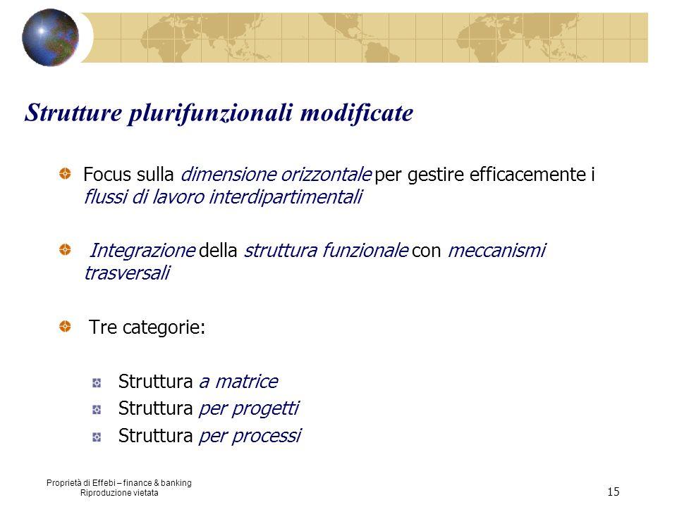 Proprietà di Effebi – finance & banking Riproduzione vietata 15 Strutture plurifunzionali modificate Focus sulla dimensione orizzontale per gestire ef