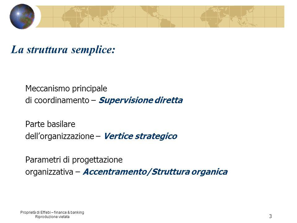 Proprietà di Effebi – finance & banking Riproduzione vietata 14 La burocrazia professionale: Meccanismo principale di coordinamento – Standardizzazione delle capacità Parte basilare dellorganizzazione – Nucleo operativo