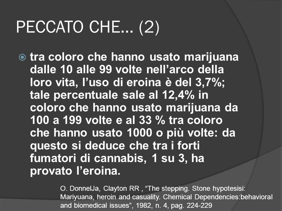 PECCATO CHE… (2) tra coloro che hanno usato marijuana dalle 10 alle 99 volte nellarco della loro vita, luso di eroina è del 3,7%; tale percentuale sale al 12,4% in coloro che hanno usato marijuana da 100 a 199 volte e al 33 % tra coloro che hanno usato 1000 o più volte: da questo si deduce che tra i forti fumatori di cannabis, 1 su 3, ha provato leroina.