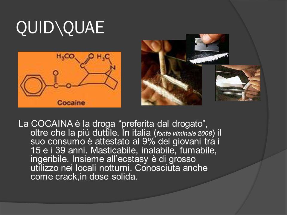 QUID\QUAE La COCAINA è la droga preferita dal drogato, oltre che la più duttile. In italia ( fonte viminale 2008 ) il suo consumo è attestato al 9% de