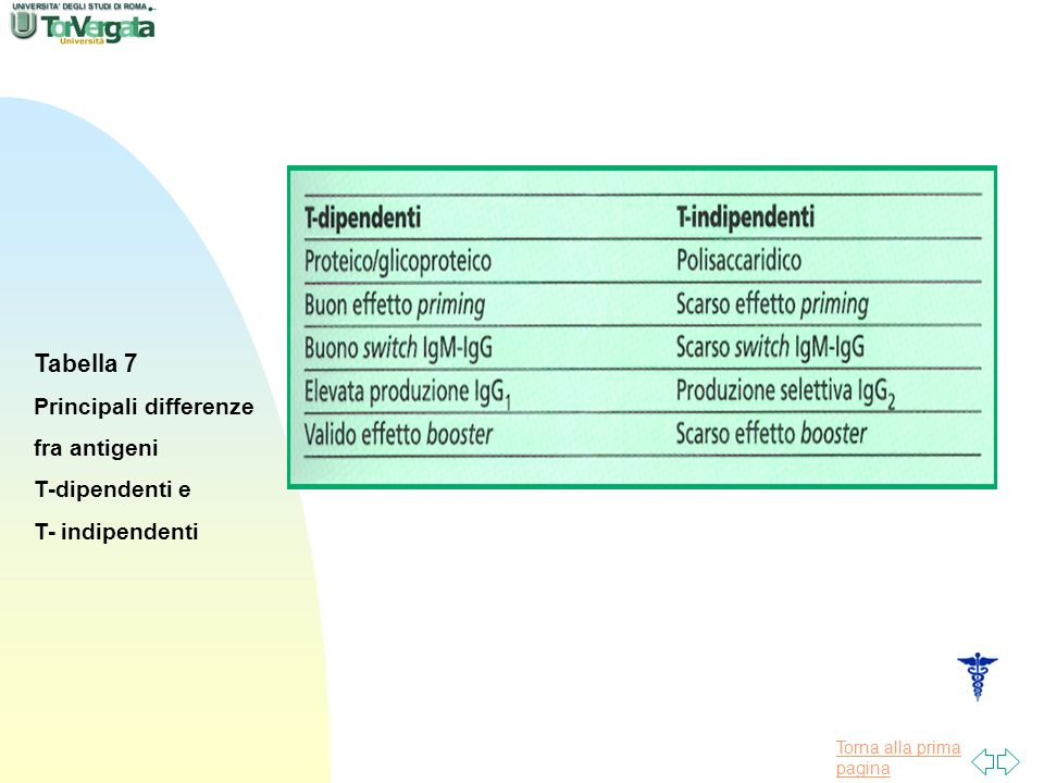 Torna alla prima pagina Tabella 7 Principali differenze fra antigeni T-dipendenti e T- indipendenti