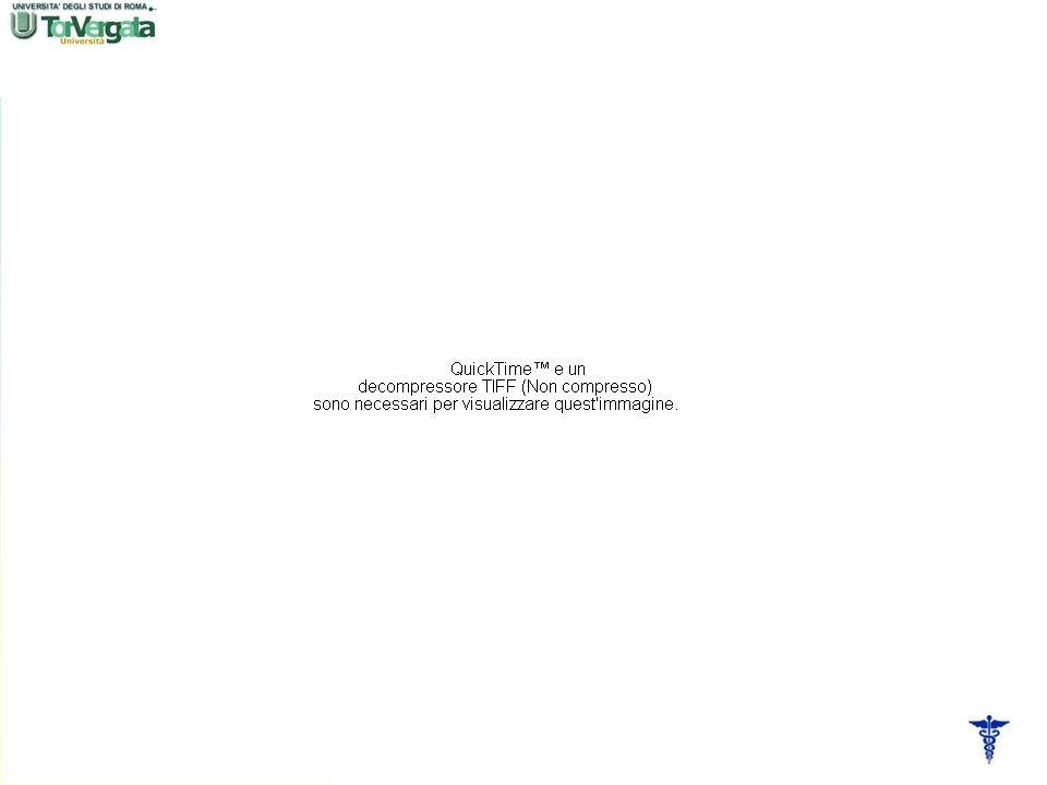 Torna alla prima pagina Dal punto di vista clinico (2): Leccessivo consumo di piastrine e fattori di coagulazione conduce alla coagulopatia da consumo con conseguente sindromi emorragiche Focolai di necrosi emorragica a livello di organi e tessuti, quali fegato, milza, polmone, capsule surrenali